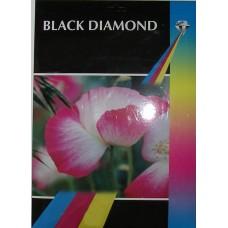 Black Diamond 6x4r (100mm x 150mm) 240gsm Gloss Photo Paper